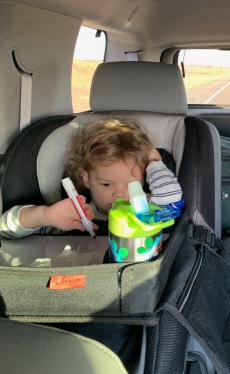 Road Trip with Toddlers 4